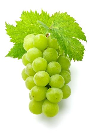 よしだ葡萄園のおいしいシャインマスカットと白ワインのセット