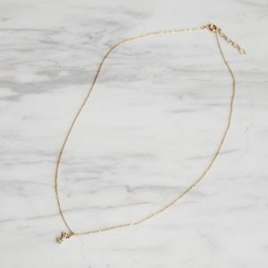 nim-17 Necklace