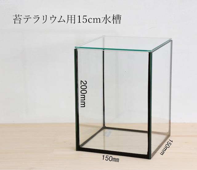 【ガラス容器】 苔テラリウム用 15cmガラス水槽 (150x150xh200mm)
