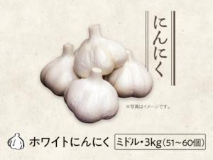 【22】にんにく ミドル・3kg(51〜60個)