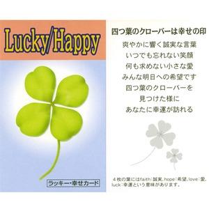 【幸運・癒し・恋愛・金運・円満・長寿】癒やしのラッキーカラフルブレス(ラッキー・幸せカード付き)
