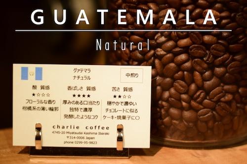 中煎り/グァテマラ ナチュラル 100g
