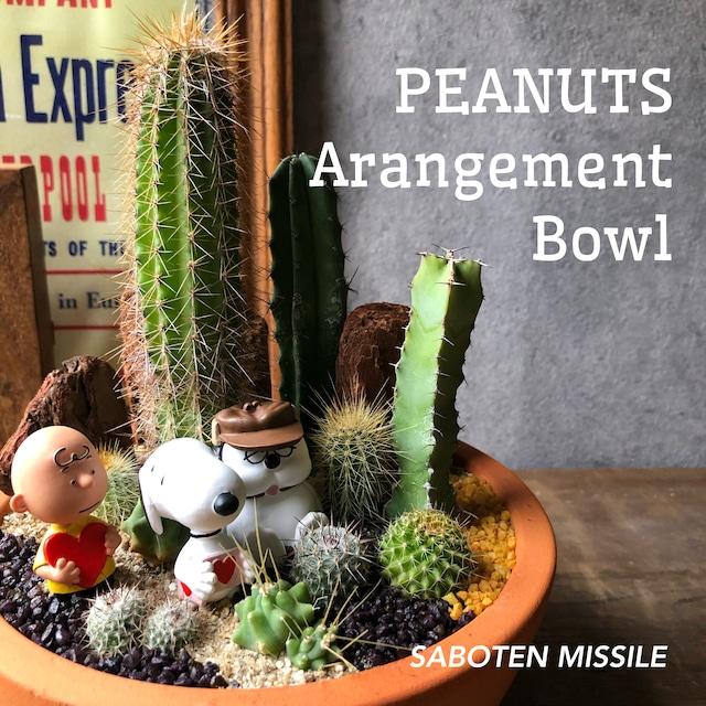 PEANUTS Arrangement Bowl ボウル