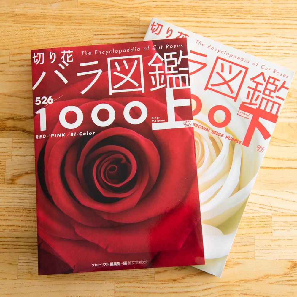切り花 バラ図鑑1000 上下巻セット