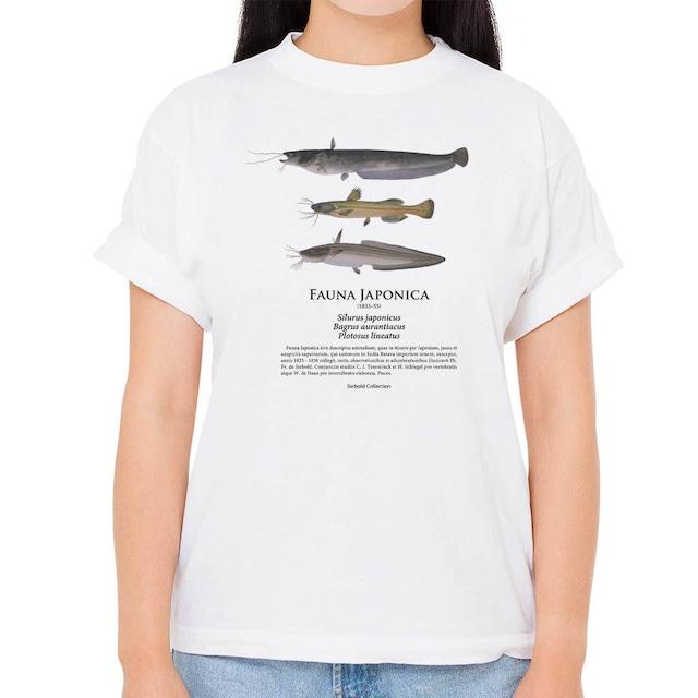 【ナマズ・ギバチ・ゴンズイ】シーボルトコレクション魚譜Tシャツ(高解像・昇華プリント)