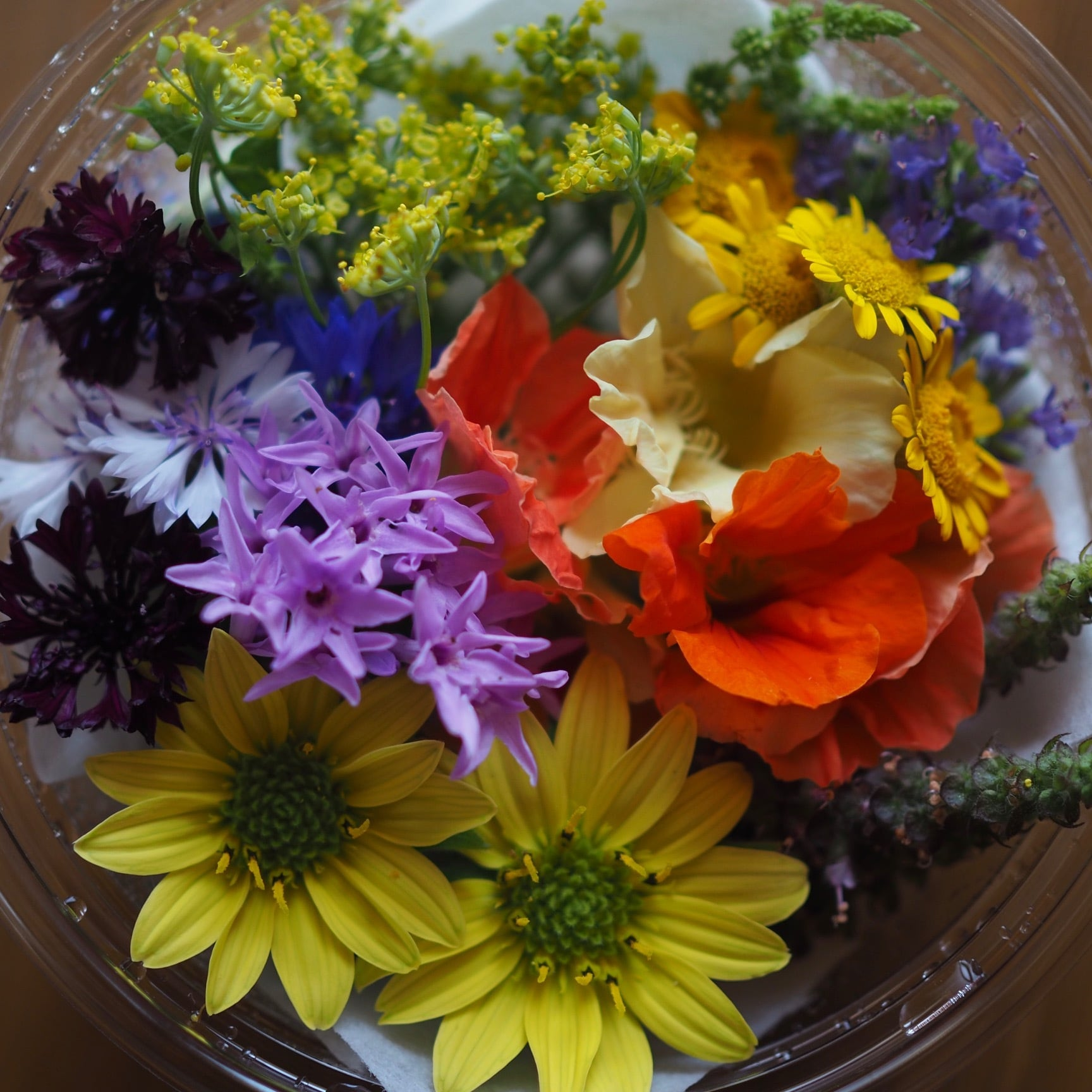 Edible flowers mix  エディブルフラワーミックス Sサイズ