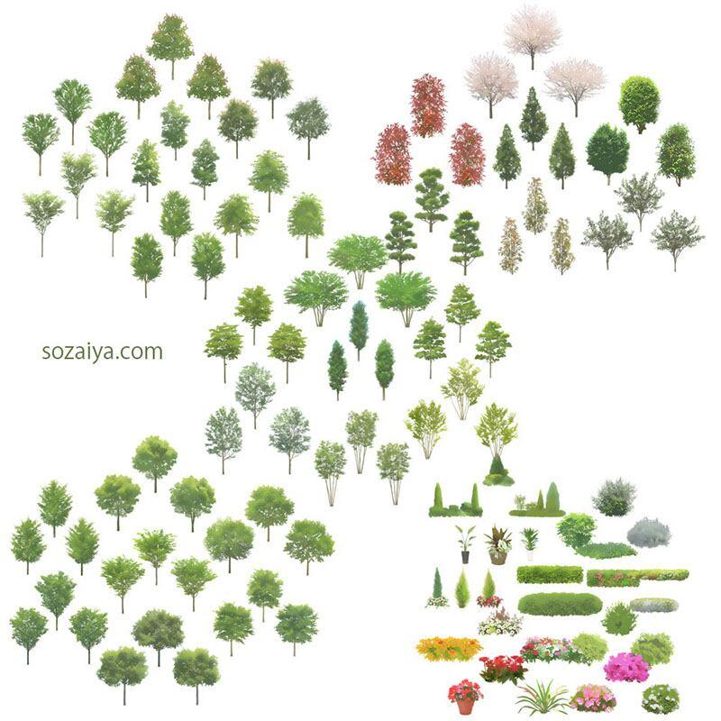 樹木イラストセットSketchUp 4b_006 - 画像2