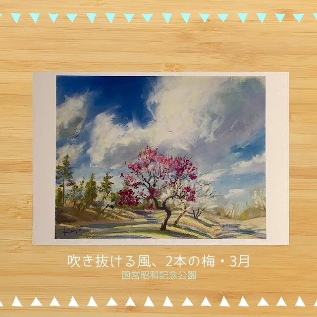 国営昭和記念公園の風景 ポストカードセットC