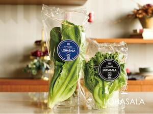 LOHASALA フリル&ロメイン各3個セット 無洗LED栽培野菜