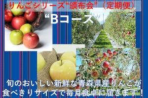 おまかせ青森りんご 頒布会(定期便)Bコース【ご家庭用】【5kg /箱×6回】送料無料