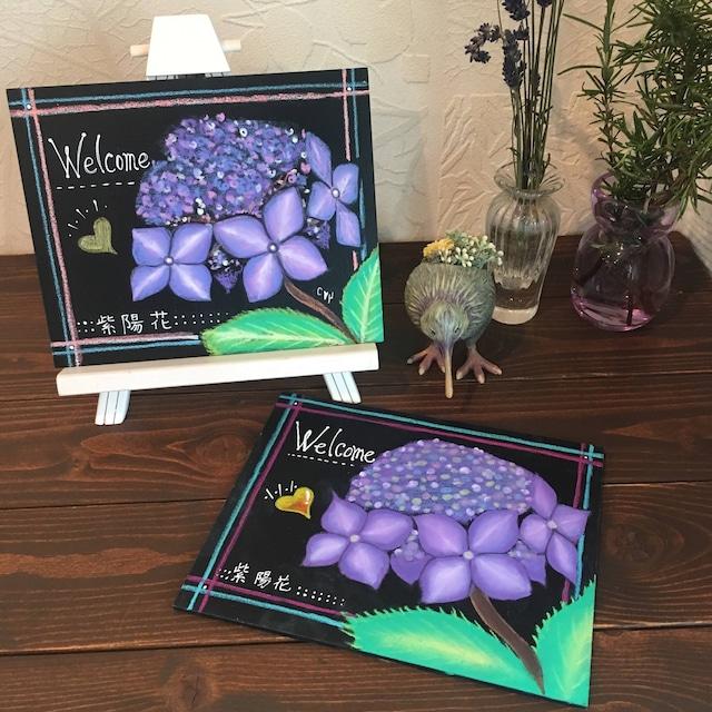 体験レッスン:紫陽花