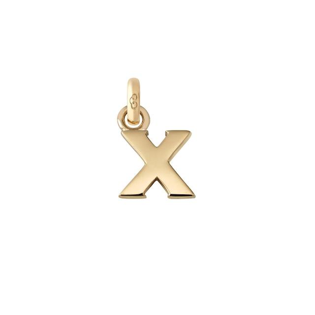 アルファベット X チャーム