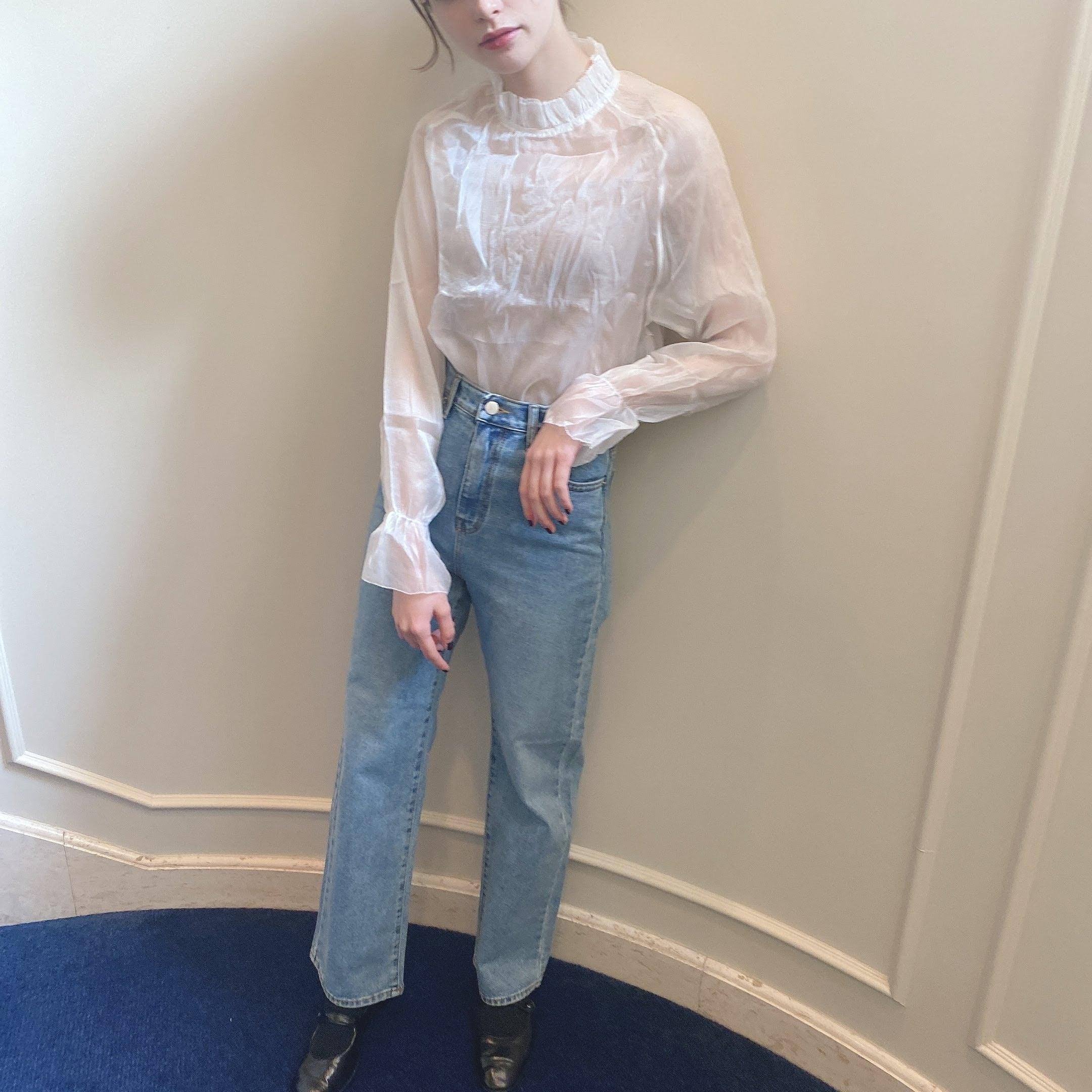 【LAST3】frill sheer blouse
