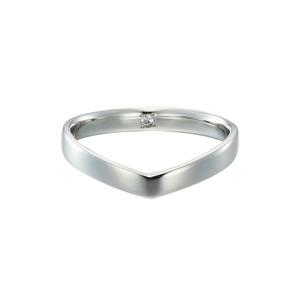 Pt900 Everlasting Ring / #16-#23