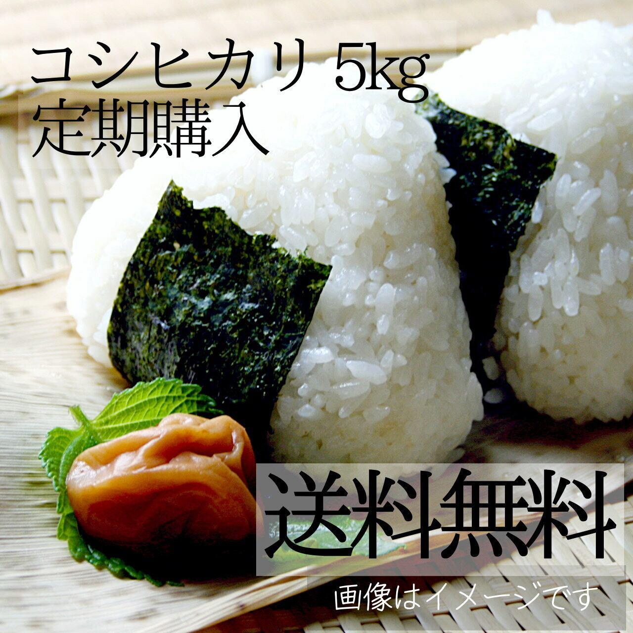 米 5kg(キロ) 新潟コシヒカリ【送料無料】【定期購入】 新潟米 精白米 阿賀野産 2021年 新米