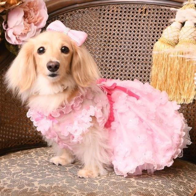 【予約】Luxe birdie デビュタントドレス ピンク ホワイト2色 ブラック