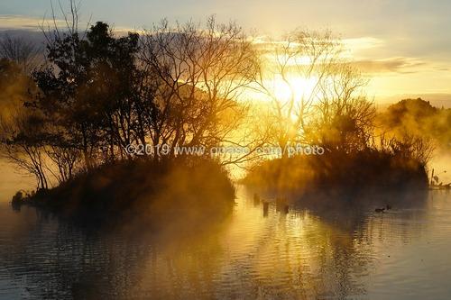浮島周辺水辺公園から見た浮島神社の瞑想的な日の出風景です。
