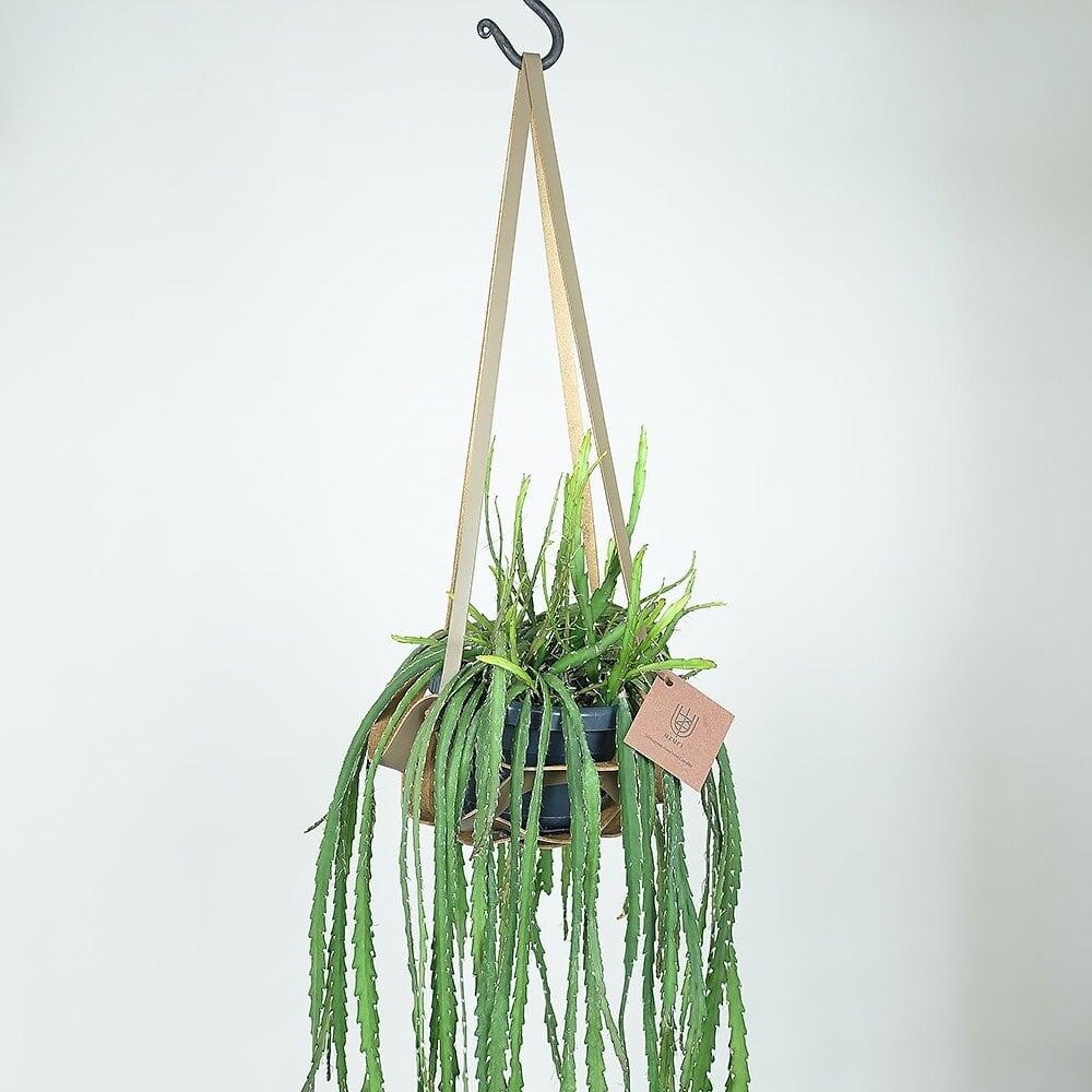 レザーハンギング(L)   Leather Hanging(L)