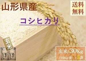 山形県産【コシヒカリ】玄米 30Kg/袋【送料無料】