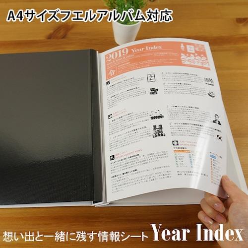 想い出INDEXシリーズ 「Year Index」 A4サイズフエルアルバム用情報シート
