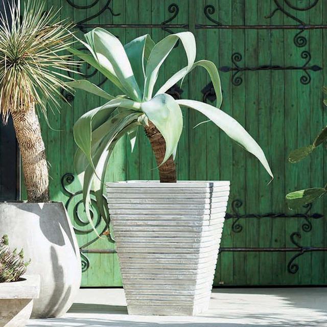 【お取り寄せ商品】LIGNE SQUARE  PLANT COVER  ASPLUND