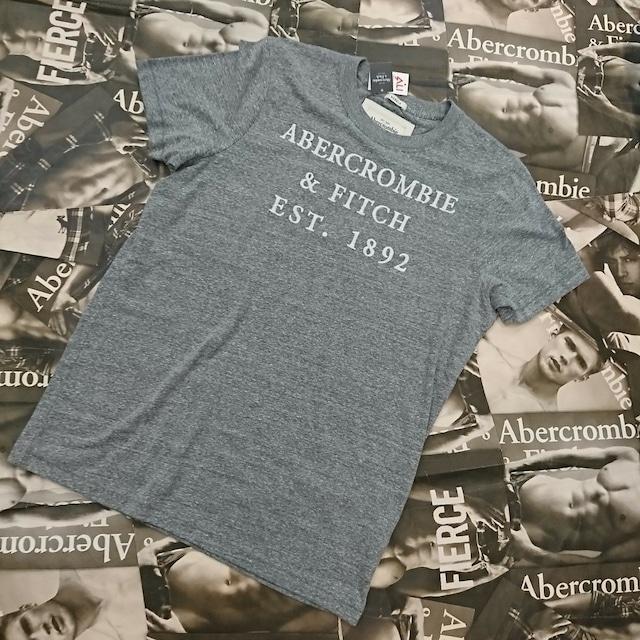 Abercronmbie&FitchメンズTシャツXXLサイズ
