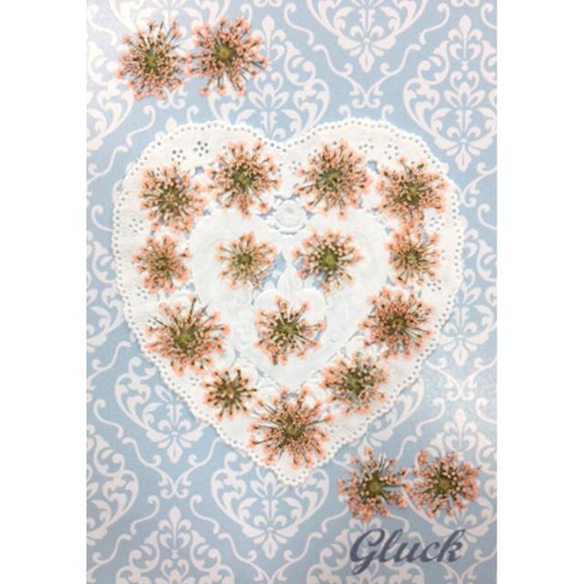 コンパクト押し花 ハートフルレースフラワー(着色ベビーピンク) 少量をパックにしてお届け! 押し花素材