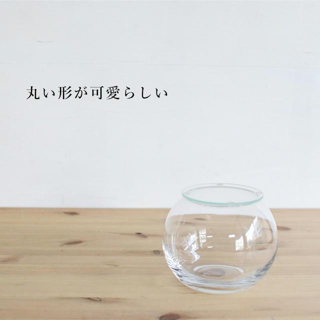 【ガラス容器】インテリアボールM(口径80xh95mm)◆適度な通気で丈夫に育つ