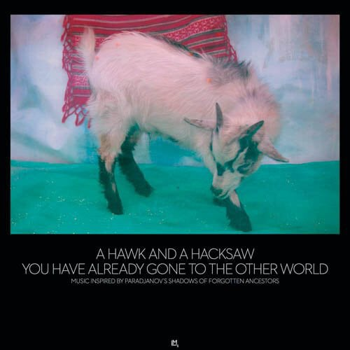A Hawk And A Hacksaw - You Have Already Gone to the Other World (2LP)