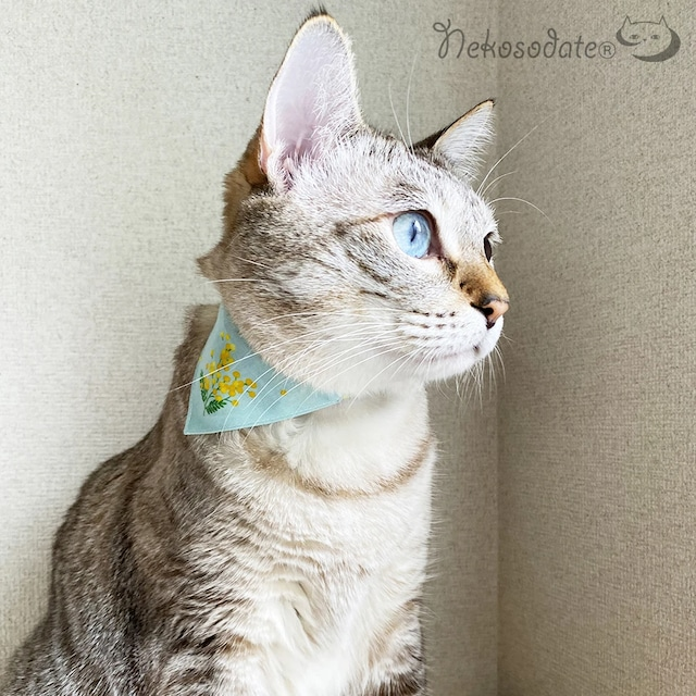 【ミモザ柄ブルー】猫用バンダナ風首輪/選べるアジャスター 猫首輪 安全首輪 子猫から成猫