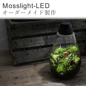 【オーダー制作 苔テラリウム】Mosslight-LED モスライト