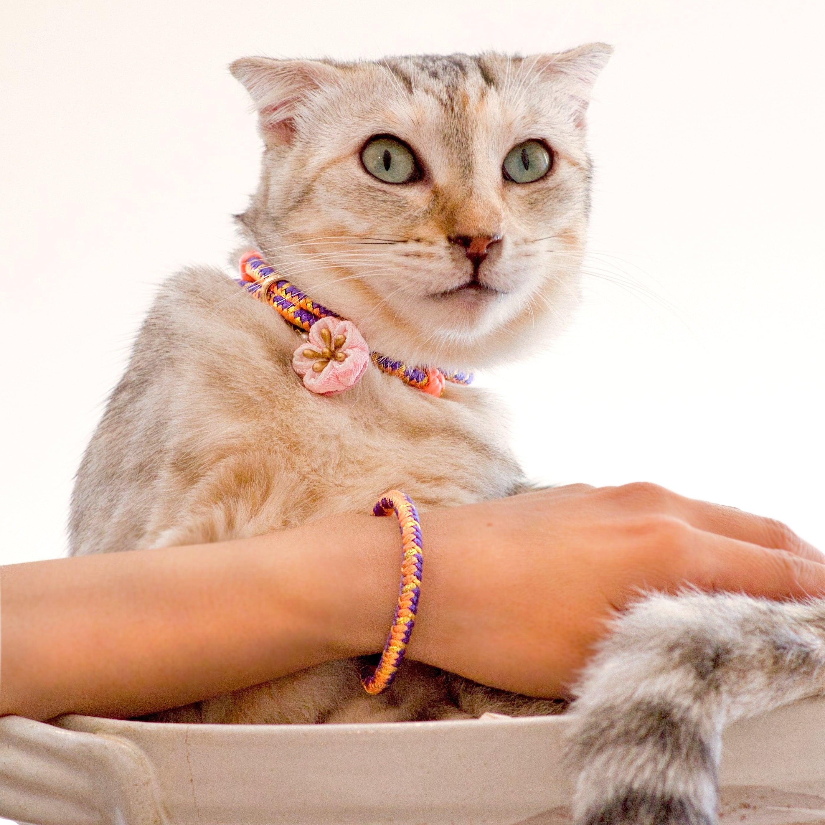 【ペア】胡蝶 組紐ブレスレット&猫首輪 ペアセット
