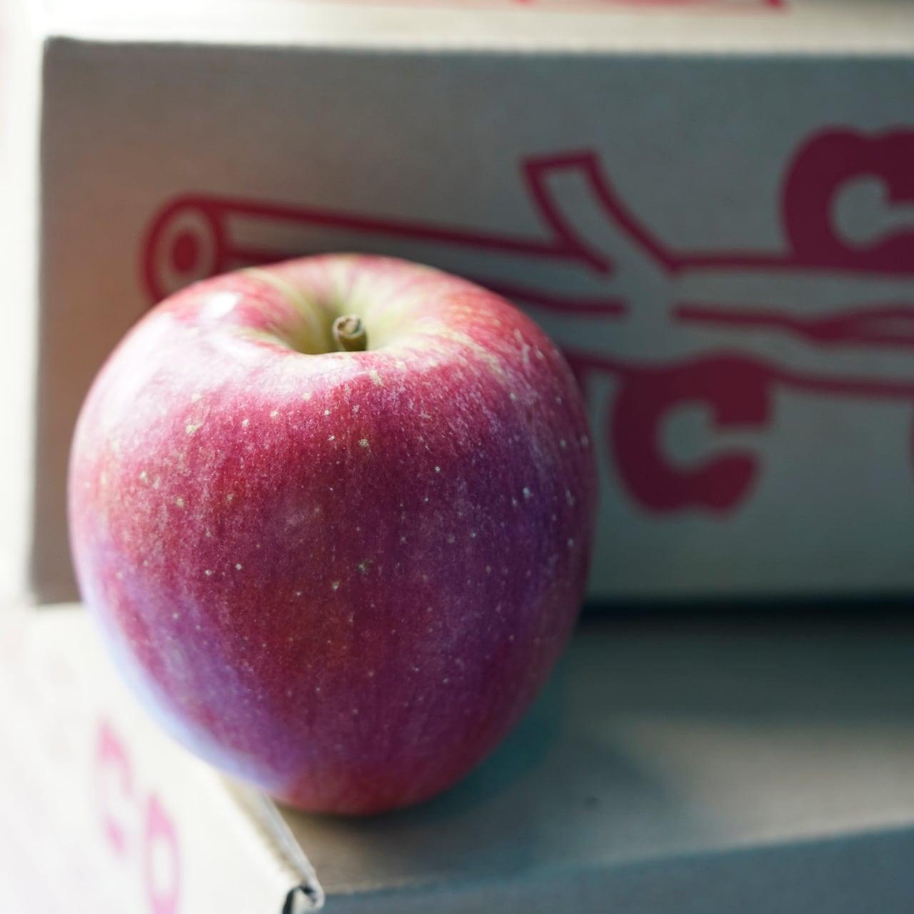 鈴木りんごco. / シナノスイート 3kg 【信州の環境にやさしい農産物50】認定農園