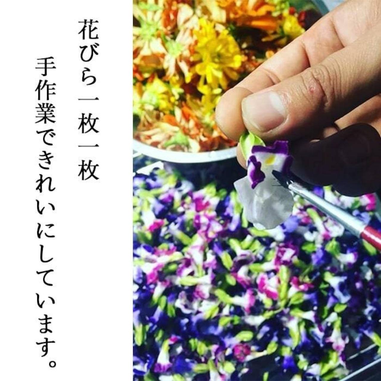 【87farm】業務用 食べられる ドライフラワー(ビオラ ひぐれももか ) エディブルフラワー