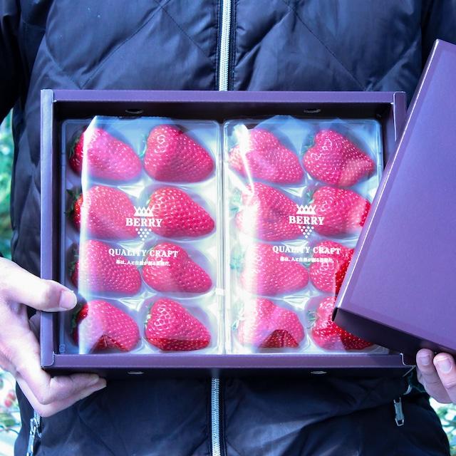 完熟紅ほっぺ苺セット 伊賀農園直送(予約販売 2021年12月中旬〜2022年1月上旬頃発送)