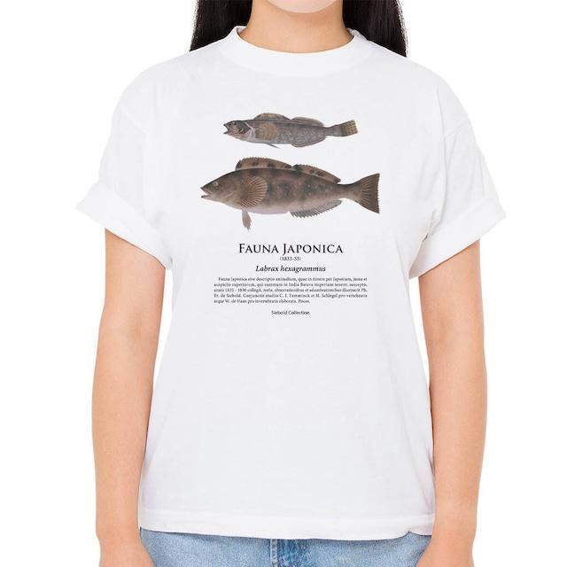 【アイナメ】シーボルトコレクション魚譜Tシャツ(高解像・昇華プリント)