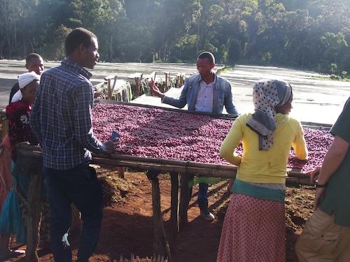 エチオピア アラカ農園・N(200g)