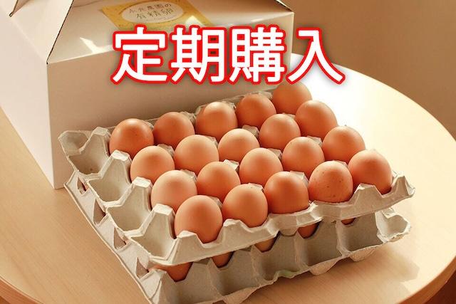 【定期購入】永光農園の平飼い有精卵 40個入り