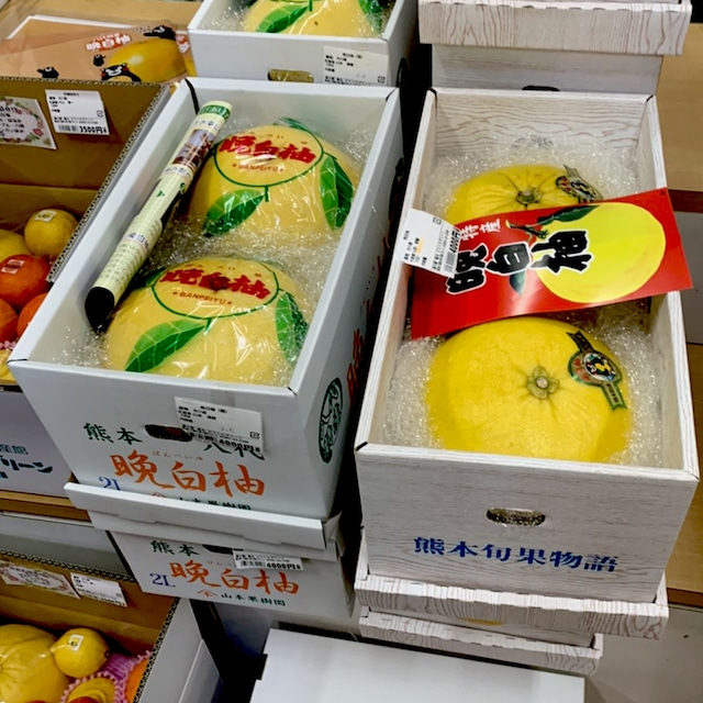 晩白柚 L玉 2玉 道の駅竜北【熊本】