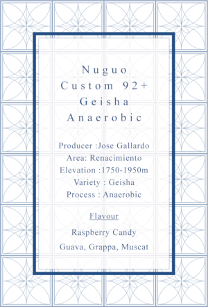 [Extreme Panama Lot.3]-Nuguo 92+ Custom Geisha Anaerobic [50g]
