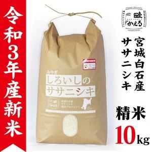【新米】令和3年産 ササニシキ精米10kg