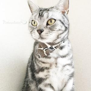 【扇柄】猫用バンダナ風首輪/選べるアジャスター 猫首輪 安全首輪 子猫から成猫
