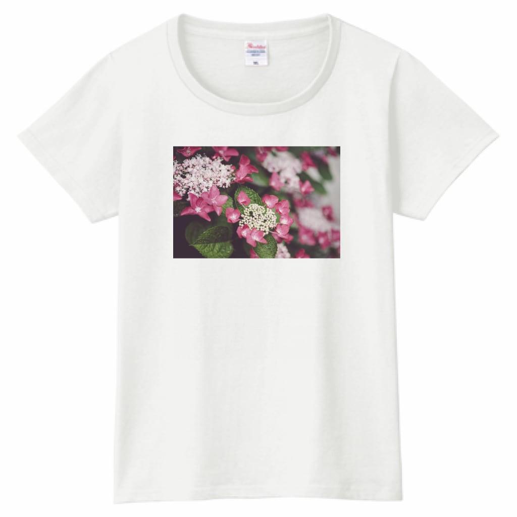 がく紫陽花|PrintstarヘビーウェイトTシャツ(レディース)