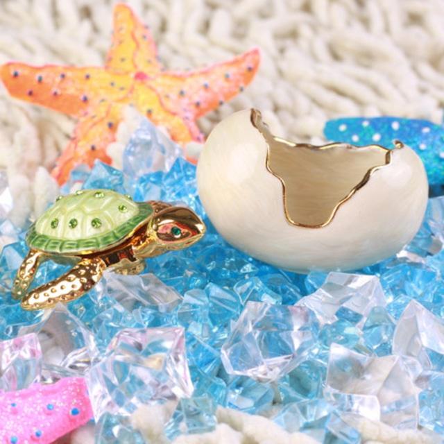 小さな宝石箱 子ガメ
