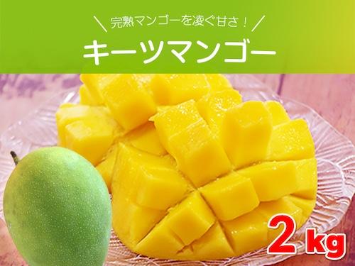 キーツマンゴー約2キロ(2玉~3玉) 沖縄県産 完熟マンゴーを凌ぐ甘さ
