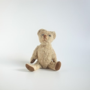 Teddy bear[B]