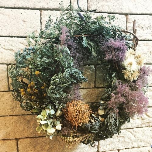 Mimosa x Smoke tree wreath