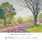 NO.8「咲き誇るチューリップ・4月」