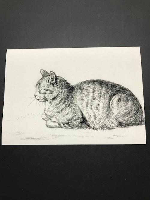 Lying cat by Jean Bernard  レプリカ