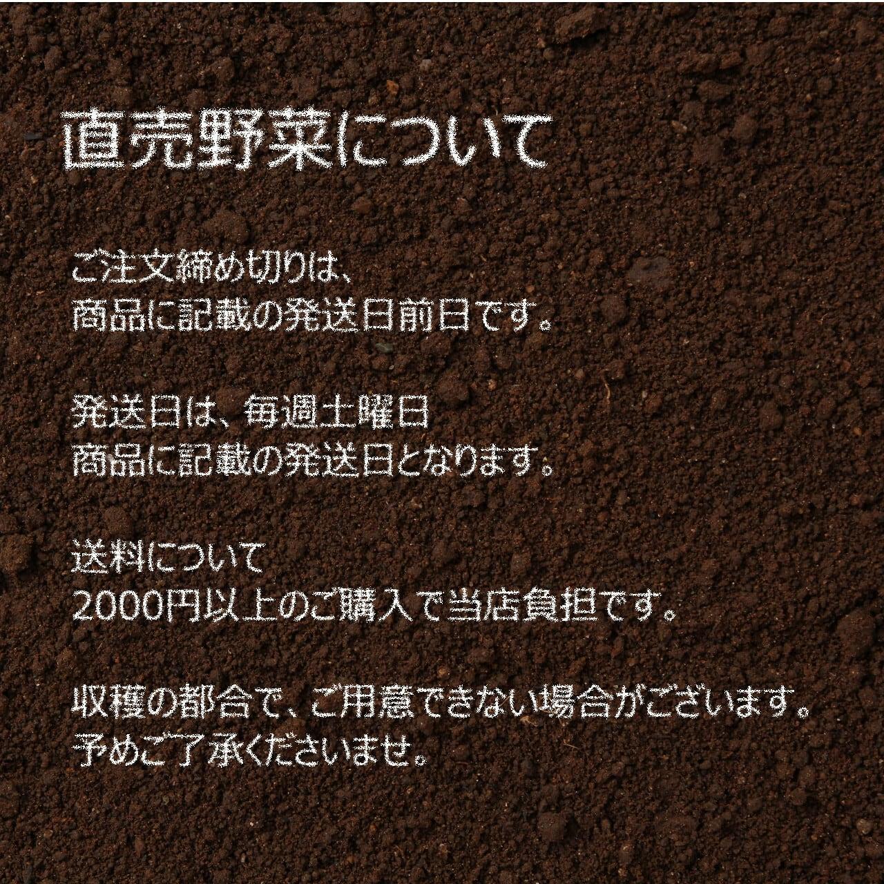 新鮮な秋野菜 : キュウリ 3~4本  9月の朝採り直売野菜 9月5日発送予定